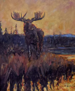 Bull Moose, 13.5x11