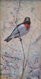 Rose-breasted Grosbeak 9.5 x 5 oil