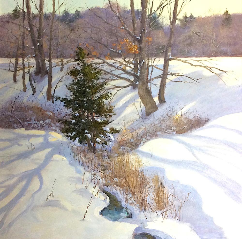 Winter Cedar , Southbury CT 24x24