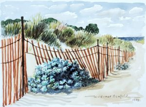 Dusty Miller and Dune Fence 9x11.5 1990 watercolor