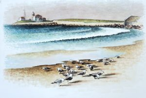 Seagulls on East Beach 21x30 1969 watercolor